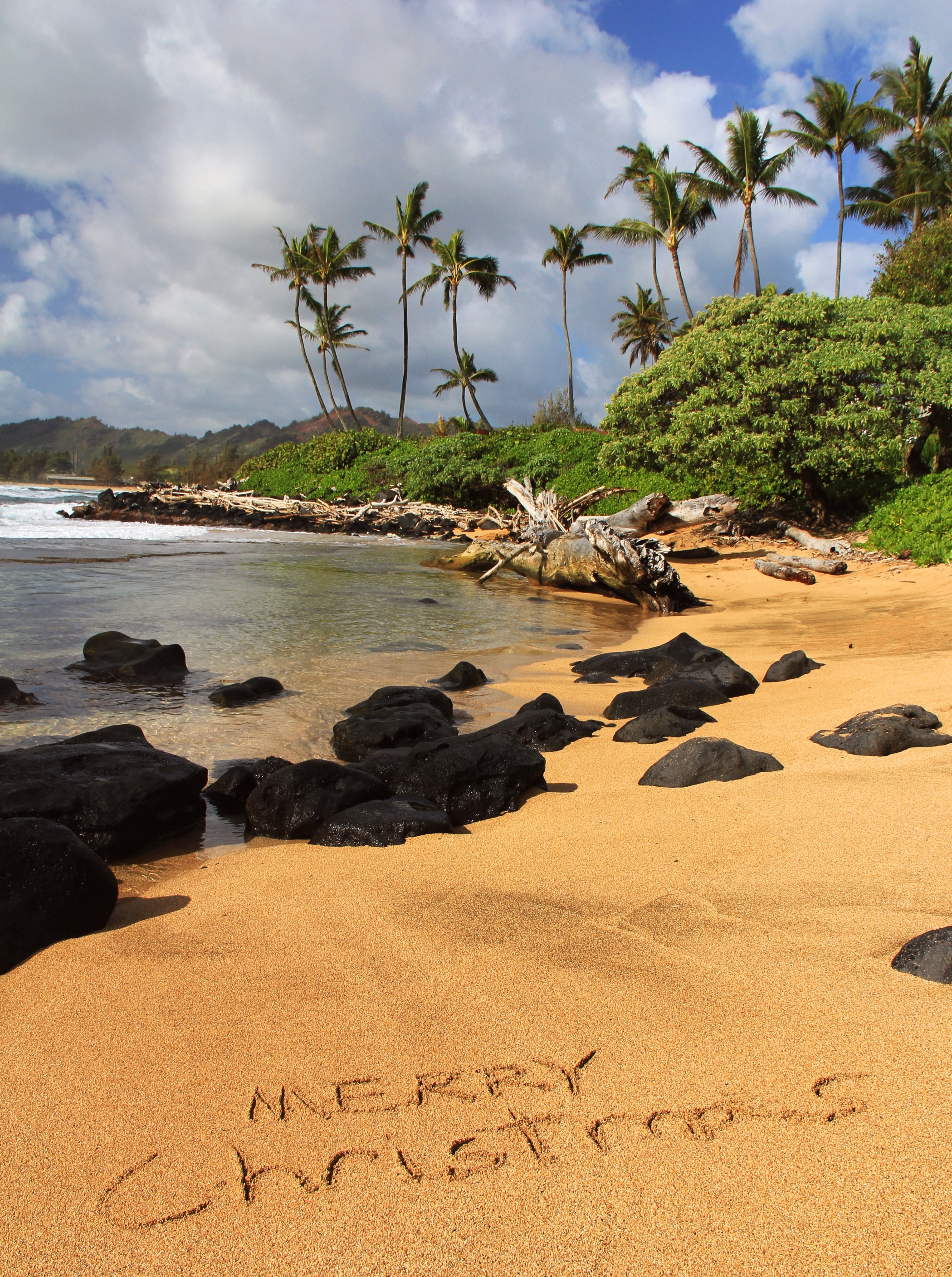 while youre in lihue visit the kauai museum which holds its annual christmas craft fair in december visitors can purchase authentic hawaiian made gifts